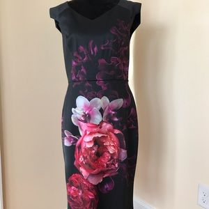 NWT Ted Baker Semanj Splendour Dress size 10